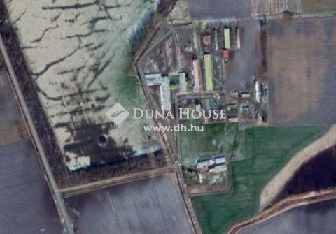 Eladó Ház, Hajdú-Bihar megye, Hosszúpályi - A településhatártól 1 km-re